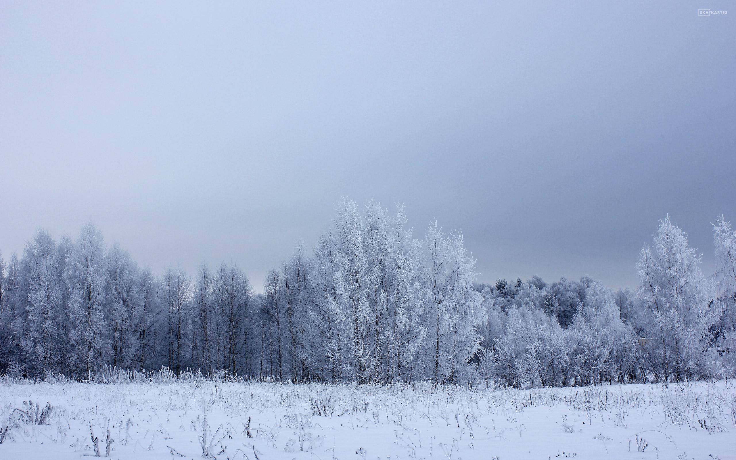 Skatkartes-Latvija-Rigas-regions-Salaspils-ziema-2013