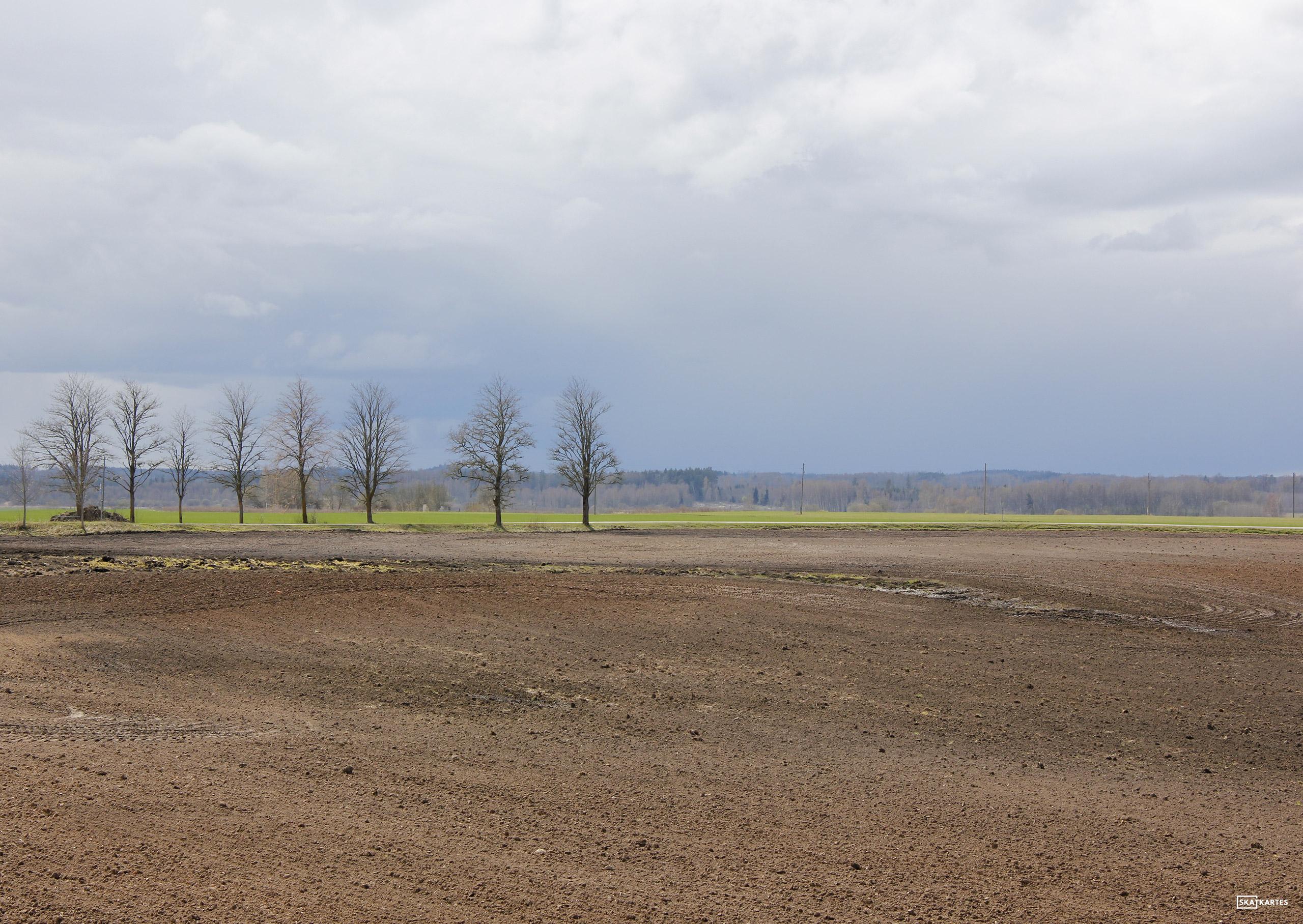 Skatkarte Nr. 1113 - Dabas ainava no P104 lielceļa (2016. gada pavasaris).
