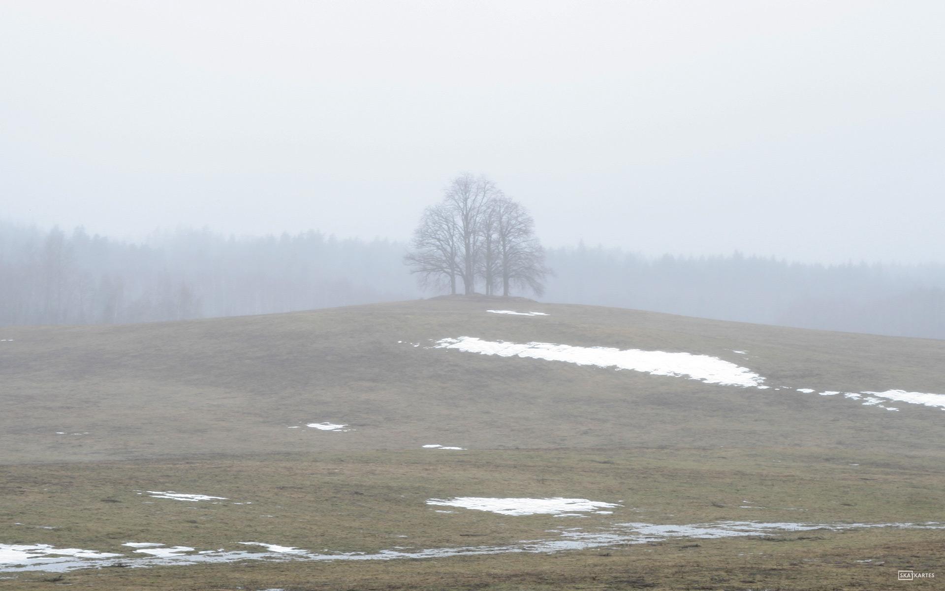 Skatkartes-Latvija-Vidzeme-Cesis-pavasaris-lauks-2011