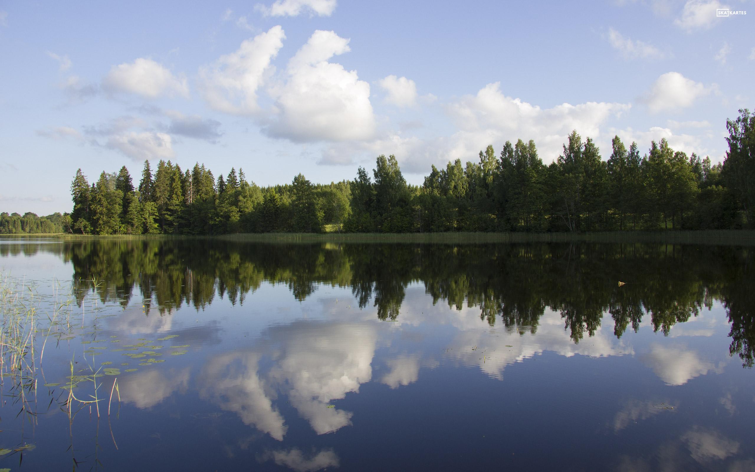Skatkarte Nr. 1041-1 - Lizdoles ezers un apkārtne (2015. gada jūnijs).