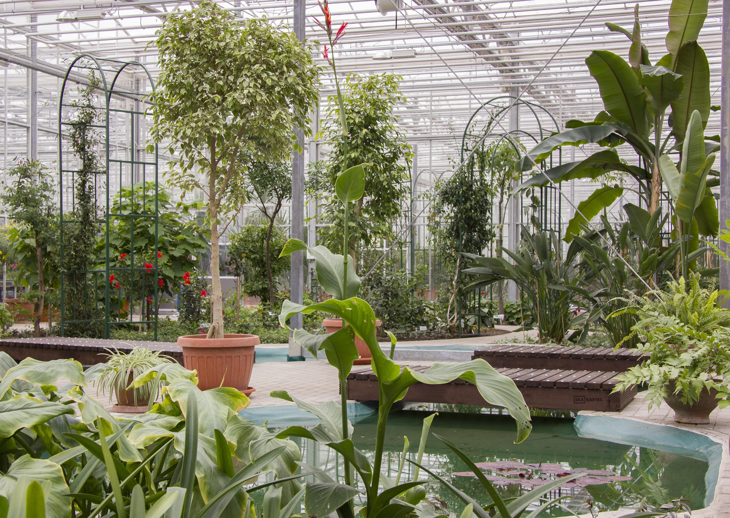 Skatkarte Nr. 1114 - Nacionālais botāniskais dārzs (2015. gada aprīlis).