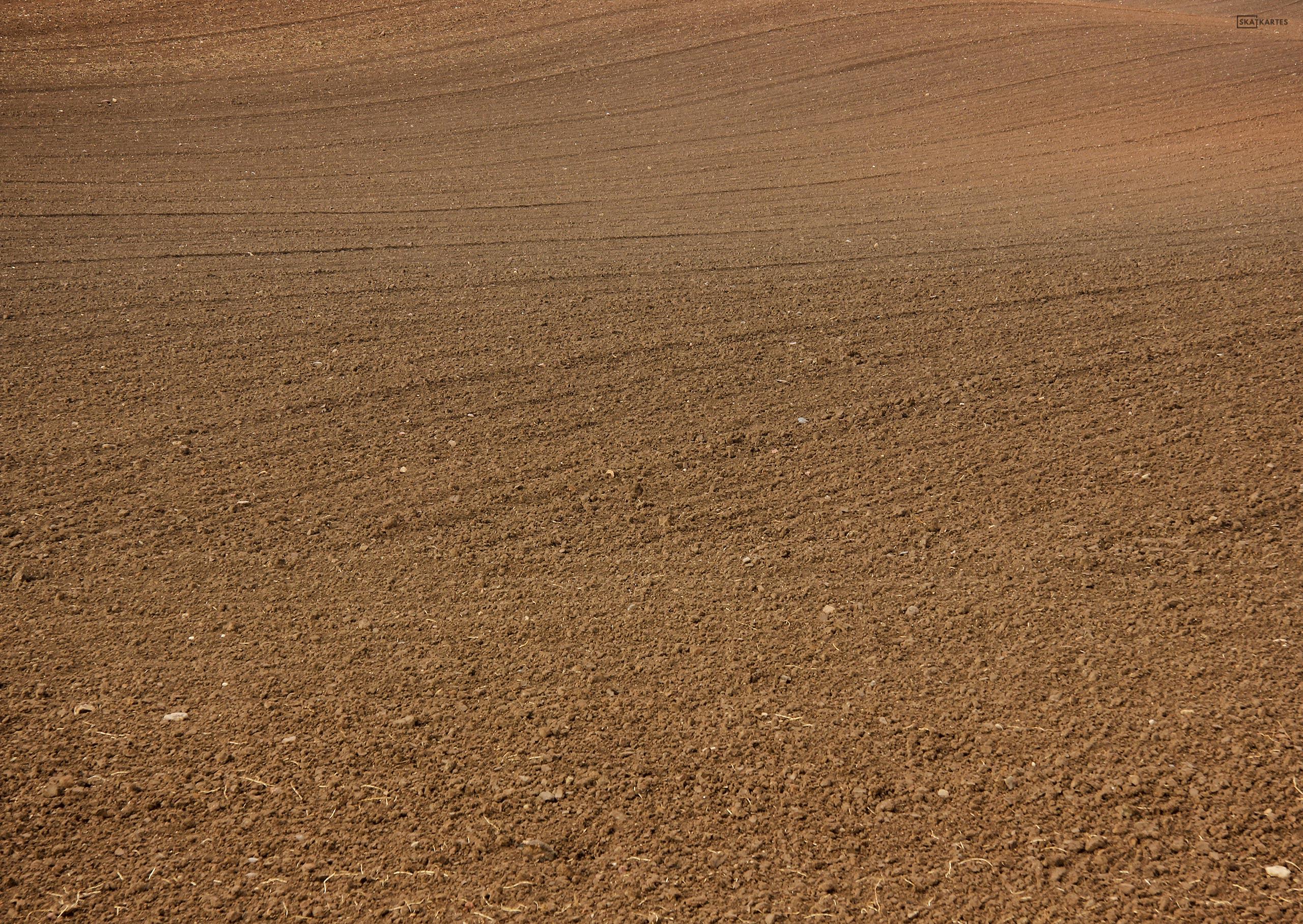 Latvija, Rīgas reģions, Kurzeme, Tukuma novads, Latvijas lauku ainava, pavasaris, dabasskati, lauks, labības lauks, brūna, 2016, ekrāntapete, wallpaper, fotogrāfija, pastkarte,